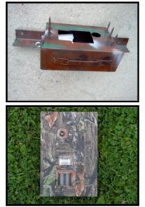 Trail Cam Lock Box