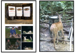 boarmasters deer mineral attractants
