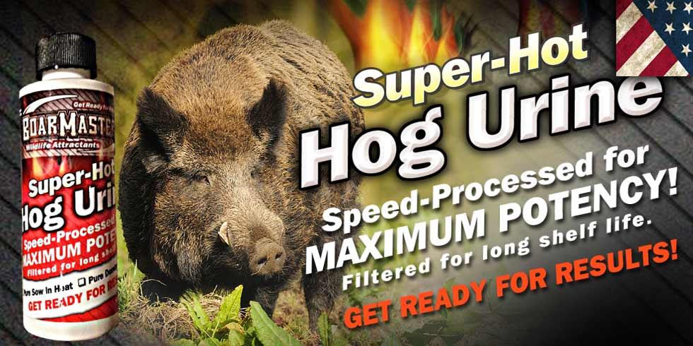 boarmasters-hog-urine-slider