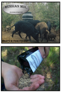 boarmasters russian mix boar and hog attractant