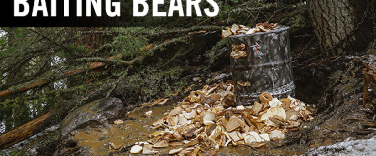 5 Golden Rules to Baiting Bears by Top Priority Hunting